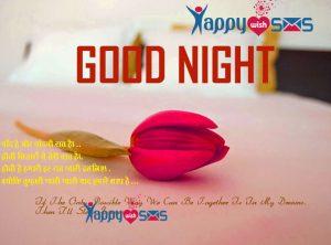 Good Night Wishes : चाँद है और चांदनी रात है। ..
