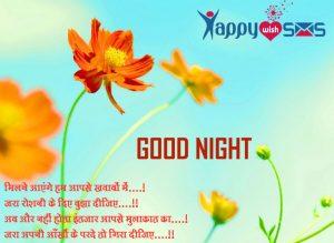 Good Night Wishes : मिलने आएंगे हम आपसे ख़्वाबों में….!