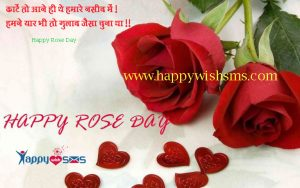 Rose Day Sms : काटें तो आने ही थे हमारे नसीब में…!
