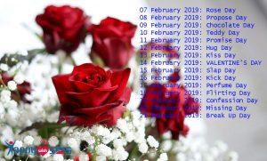 Valentine's Week Days List 2019 : Calendar, Date Sheet of Rose, Propose, Chocolate, Promise, Hug, Teddy, and Kiss Day